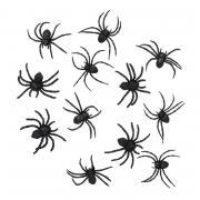 12 schwarze Spinnen