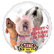 Musikballon Happy Barkday to You ø71cm