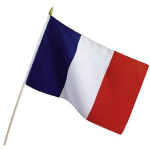 Stockflagge Frankreich 30x45cm