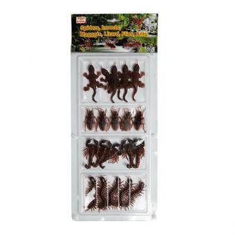 20 eklige Insekten Skorpion Küchenschabe & Co