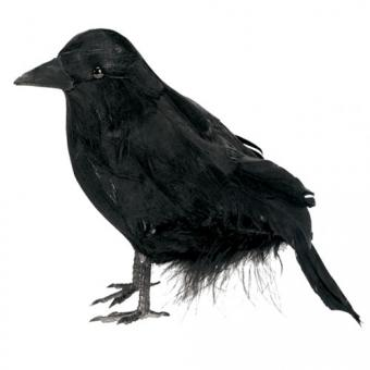 Schwarzer Rabe 10cm